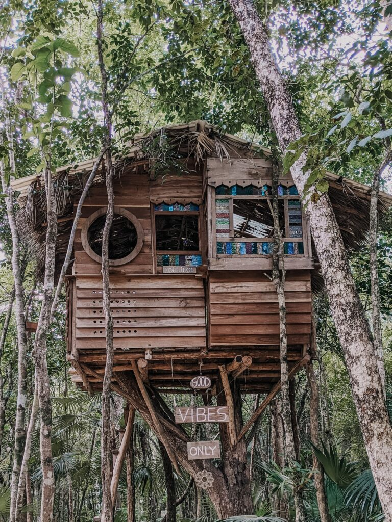 Treehouse with 3 windows and a palm tree thatched roof.